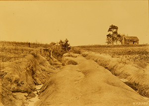 Neglected roadway. Roads, as well as any bare surface, were highly vulnerable to soil erosion.