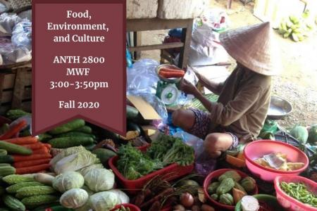 food, environment, and culture